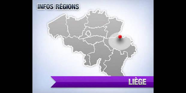 Six personnes suspectées d'association de malfaiteurs interpellées à Plombières - La DH