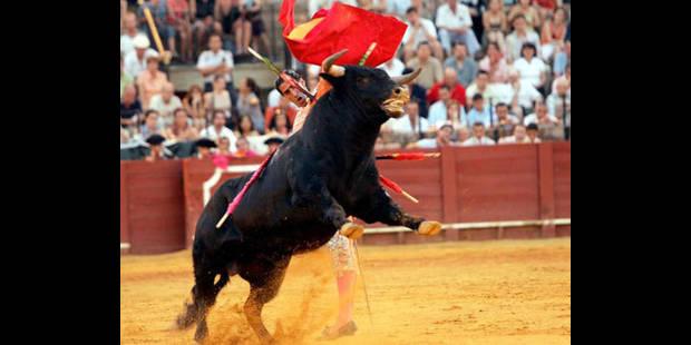 La corrida fait son retour à la télévision publique espagnole - La DH