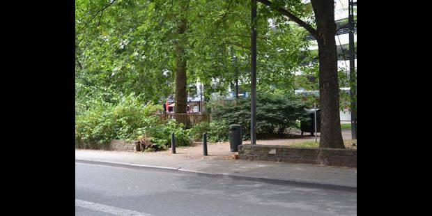 Sauver le parc Léopold - La DH