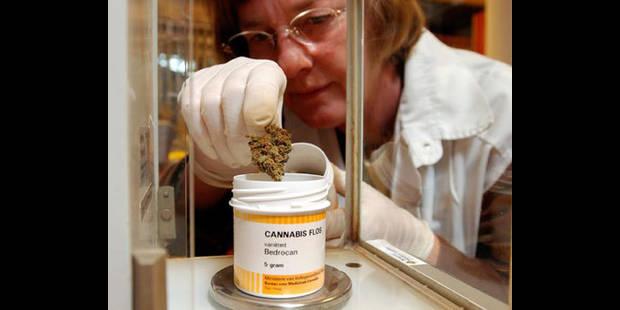 Un médicament   à base de cannabis - La DH