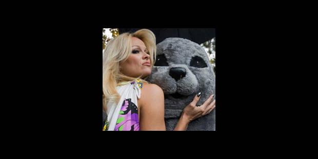 Pamela Anderson défend les phoques - La DH