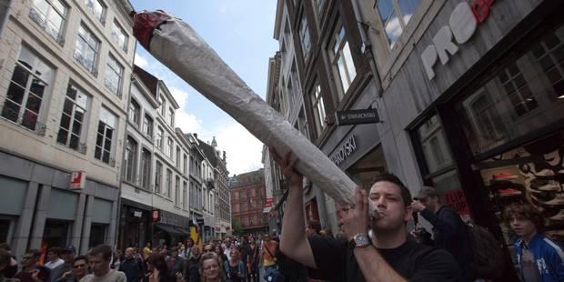 Le cannabis, la drogue la plus répandue dans le monde - La DH