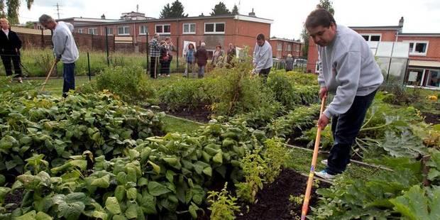 Un jardin où pousse la bonne humeur - La DH