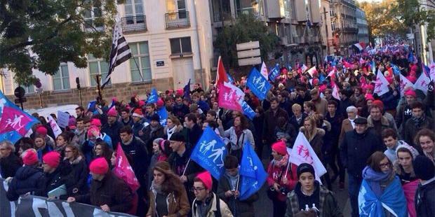 Nouvelle manifestation contre le mariage homosexuel en France - La DH