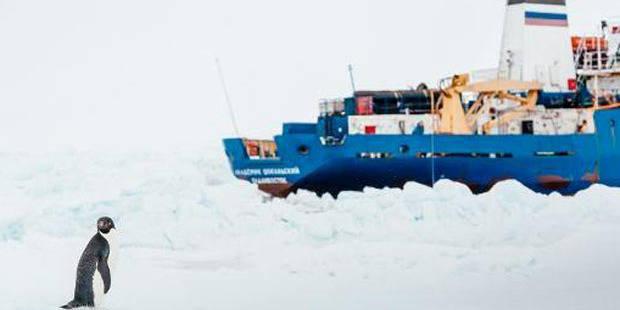 Antarctique: la saga des navires piégés dans les glaces est terminée - La DH