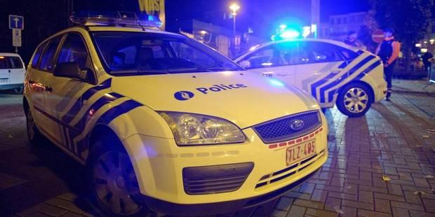 Un homme meurt écrasé par un arbre à Haacht - La DH