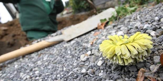 24 tombes vandalisées au cimetière de Charleroi-Nord - La DH
