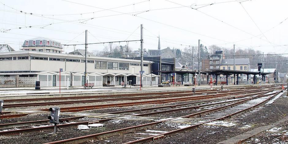 Un passager tabassé: enquête sur une bavure policière à la gare de Ciney (VIDÉO) - La DH