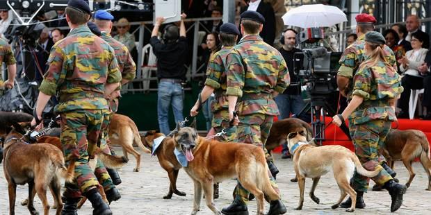 Les Belges ont-ils une bonne image de la Défense? - La DH