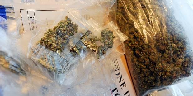 Chaumont-Gistoux: quand le cannabis est une affaire de famille - La DH