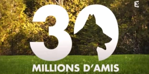 """""""30 millions d'amis"""", c'est fini - La DH"""