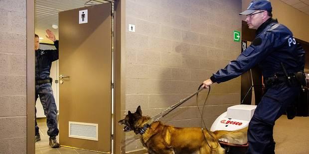 Verviers: deux nouveaux maîtres-chiens sont actifs - La DH