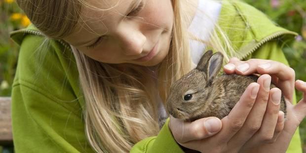 Tests en laboratoires : la Belgique, championne du monde de la maltraitance animale - La DH
