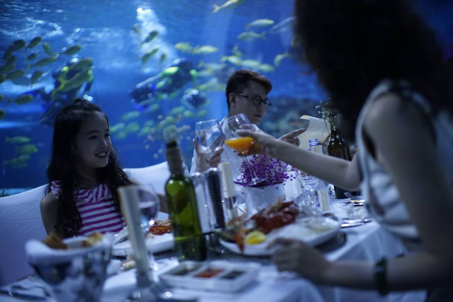 Une activité touristique de plus pour les Witsel : un très grand aquarium rassemble des milliers d'espèces. Et l'on peut y manger dans un tunnel restaurant installé sous un des quariums.