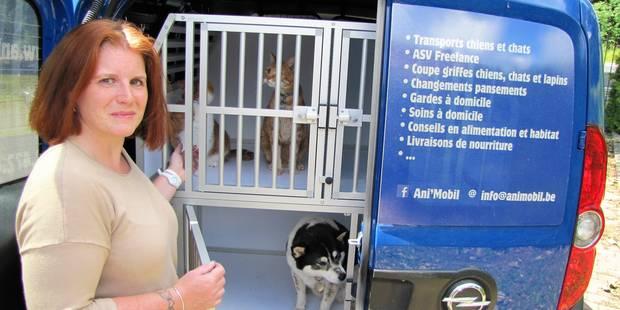 Ath : Des vacances sans soucis pour les animaux - La DH