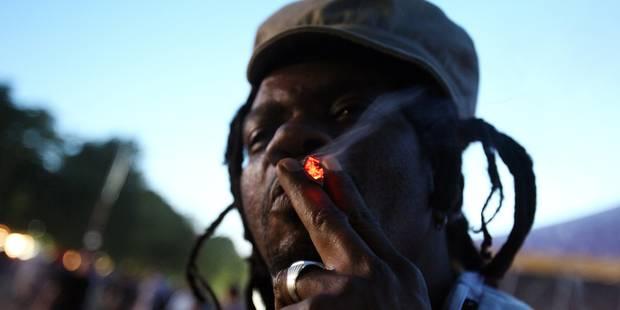 Deux mandats d'arrêt pour trafic de drogue au Dour Festival - La DH
