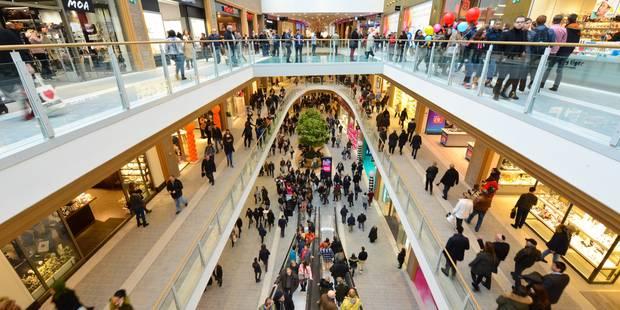 Un petit Brabançon se coince la jambe dans un escalator au centre commercial Rive Gauche - La DH