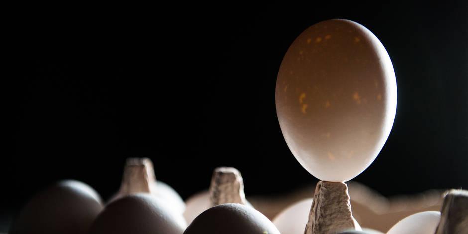 Des œufs contaminés en France