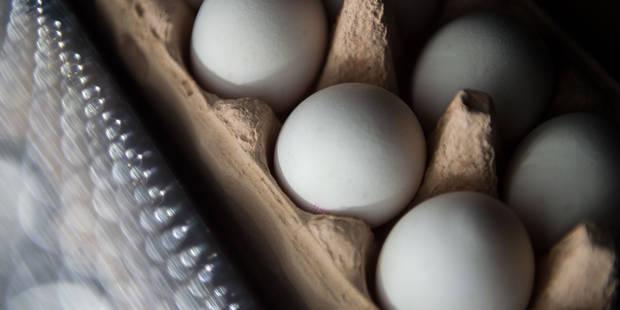 Oeufs contaminés par un insecticide: Albert Heijn, Colruyt et Delhaize retirent les oeufs des rayons en Belgique - La DH