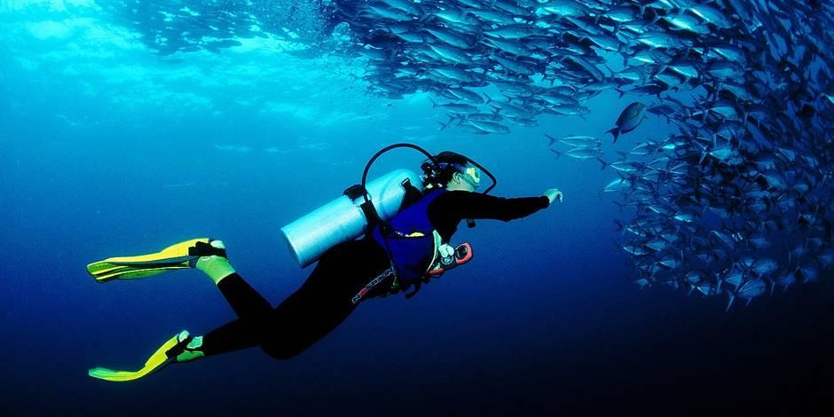 La plongée, le sport qui aide les victimes des attentats
