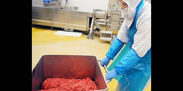 Viande chevaline : Pas de danger dans les assiettes belges - La DH