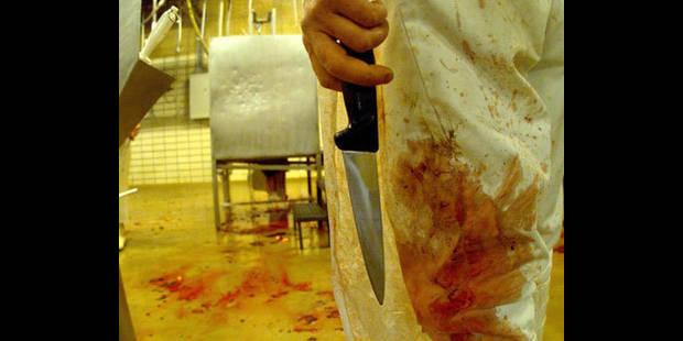 De la viande de cheval retrouvée dans des lasagnes Findus - La DH
