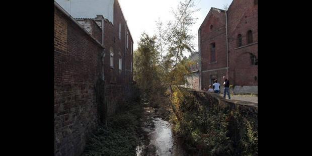 La rivière bientôt  propre - La DH