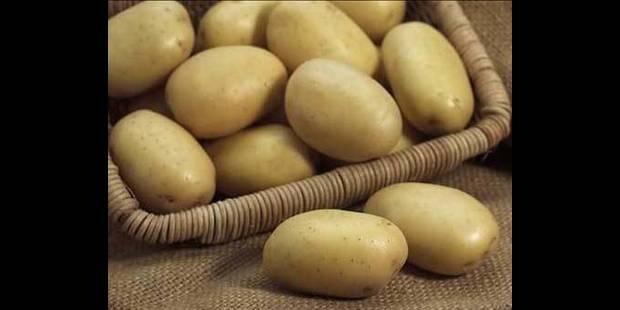 Les pommes de terre belges n'ont pas la patate - La DH