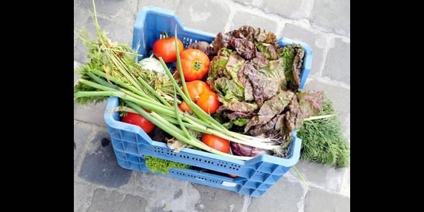 Les prix des aliments de base doublés d'ici à 2030 ? - La DH