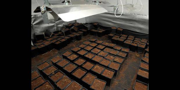 La police belge arrête 17 personnes lors d'une opération anti-drogue - La DH