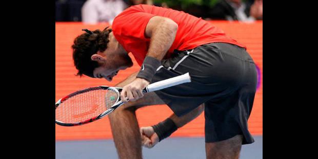 Finale Tsonga - Del Potro au tournoi de tennis de Vienne - La DH