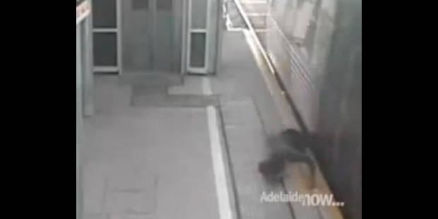 Un ado de 17 ans presque happé par un train ! - La DH