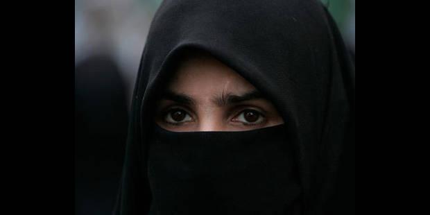 Double recours contre la loi anti-burqa - La DH