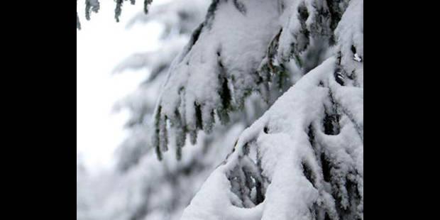Neige: les infos météo - La DH