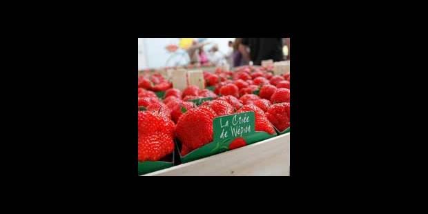 Les fraises de Wépion sont là! - La DH