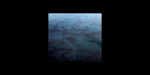 Marée noire: les autorités commencent à brûler le pétrole - La DH