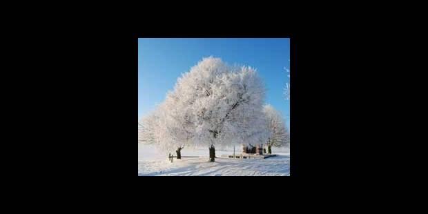 Coincés chez vous? Faites- nous partager vos belles images hivernales - La DH