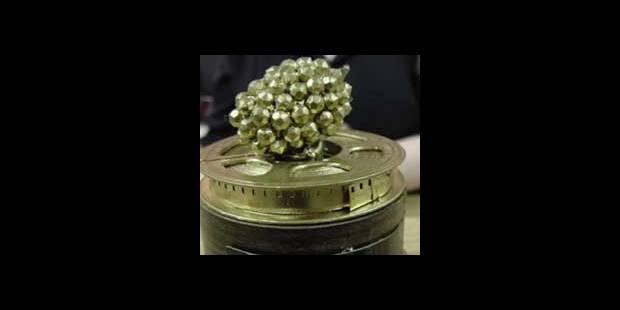 Paris Hilton nominée pour les Framboises d'or - La DH