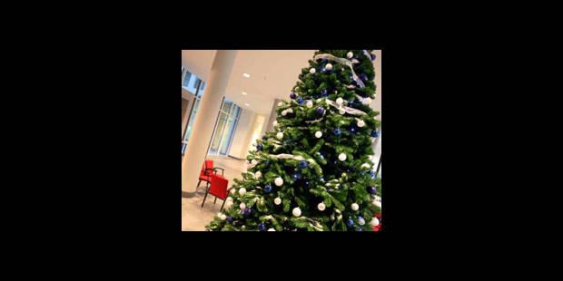 Sapins de Noël : polémique