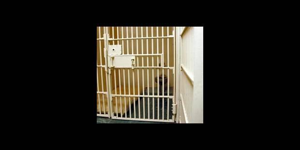 Emprisonnée un mois avec plus de 20 hommes - La DH