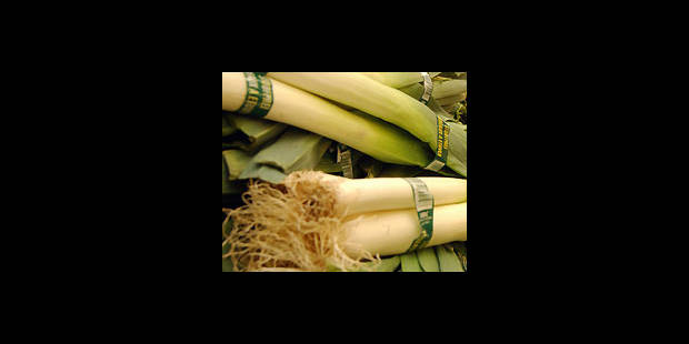 Légumes: les Belges exportent - La DH