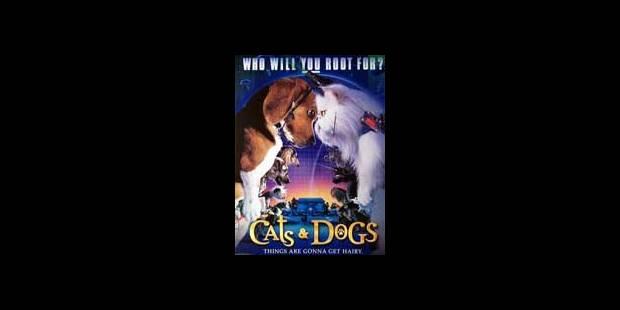 'Comme chiens et chats': espionnage animal - La DH