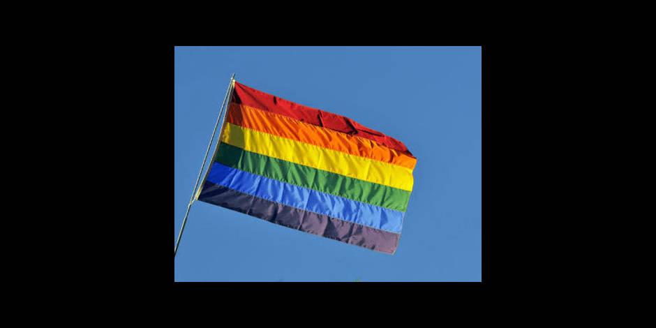 """La Russie fait de la """"propagande"""" homosexuelle un délit"""