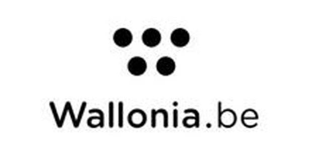 """""""Wallonia.be"""" flamand pour quelques semaines encore - La DH"""