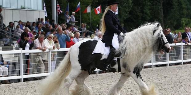 Trèfles, chevaux et Féria - La DH
