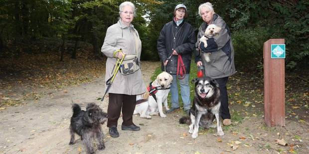 Liberté limitée pour les chiens de Duden - La DH