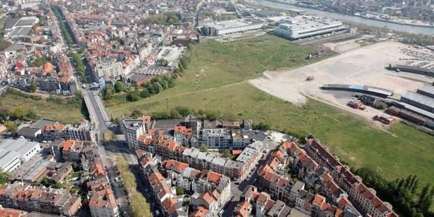 Les premiers arbres du futur parc de 20 hectares au nord de Bruxelles sont plantés - La DH