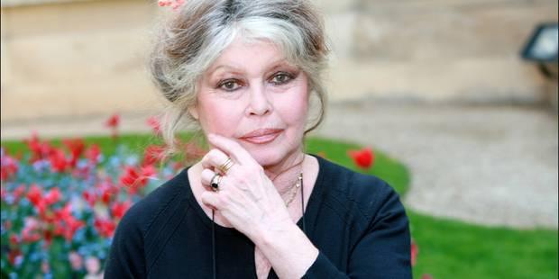 Brigitte Bardot interpelle Joëlle Milquet sur le sort des chevaux - La DH