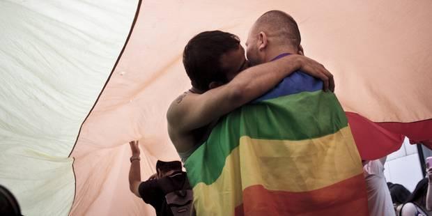 Filiation pour les couples homos: le texte de Turtelboom est enterré - La DH
