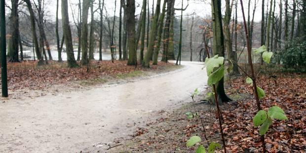 Fermeture du Bois de la Cambre durant le week-end à Bruxelles - La DH